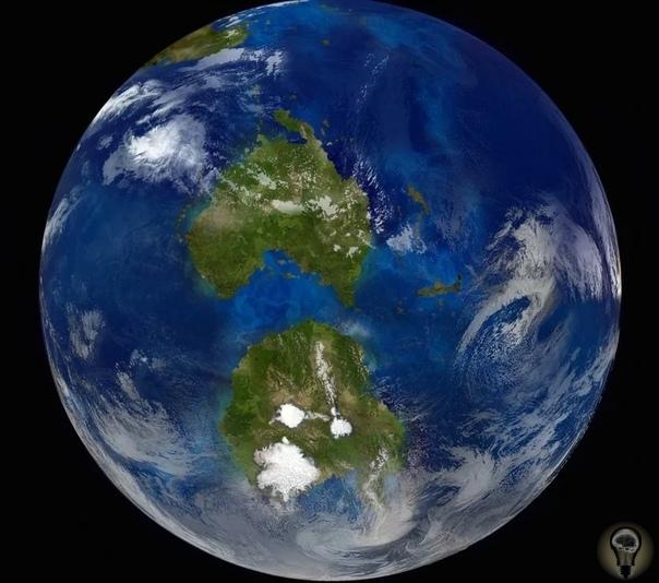 Росли ли пальмы в Антарктиде Часто в интернете можно встретить информацию, что когда-то в Антарктиде росли пальмы. И вообще, климат там был очень мягким. Есть ли доказательства подобных