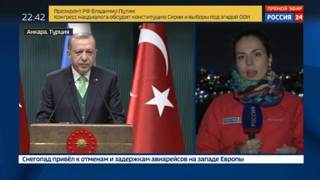 Новости на Россия 24 • Израиль и Сирия: о чем договорились Путин с Эрдоганом