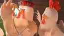 Muhteşem Tavuk Şarkısı - Çok Komik Çocuk Ve Bebek Şarkıları Minik Tv'de