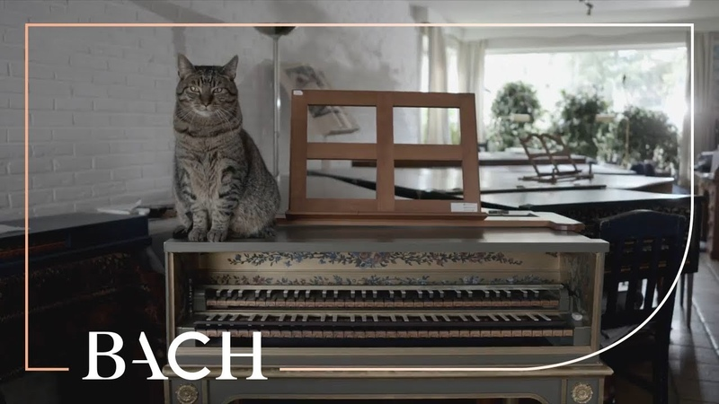 Bach - WTC I Prelude and fugue in F sharp minor BWV 859 - Ogg | Netherlands Bach Society
