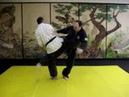 Hapkido Kick Defence