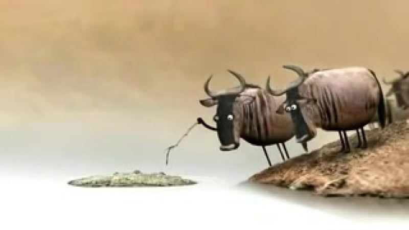 Мультик со смыслом про коров mp4