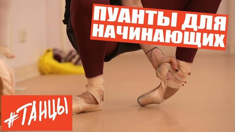Пуанты для начинающих Упражнения от балерины Анастасии Лименько