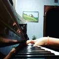 _kari_terebunskaya_ video