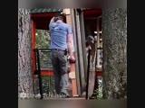 Вот такой дом на дереве - djn nfrjq ljv yf lthtdt -