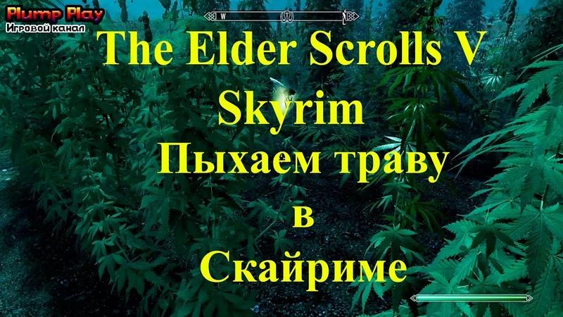 Прохождение Skyrim 003 - пыхаем траву в скайриме
