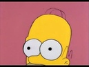 The Simpsons Best of Homer and His Brain
