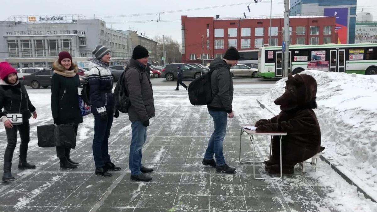 В Новосибирске медведь отвечал на любые вопросы граждан