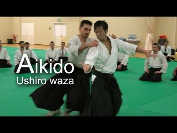 Aikido - Ushiro dori JIYU WAZA in Monaco
