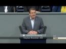 AFD Betreutes Denken 3 Millionen Maas Stephan Brandner