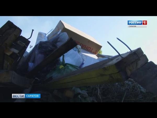 Общественники провели рейд по мусорным свалкам города » Freewka.com - Смотреть онлайн в хорощем качестве