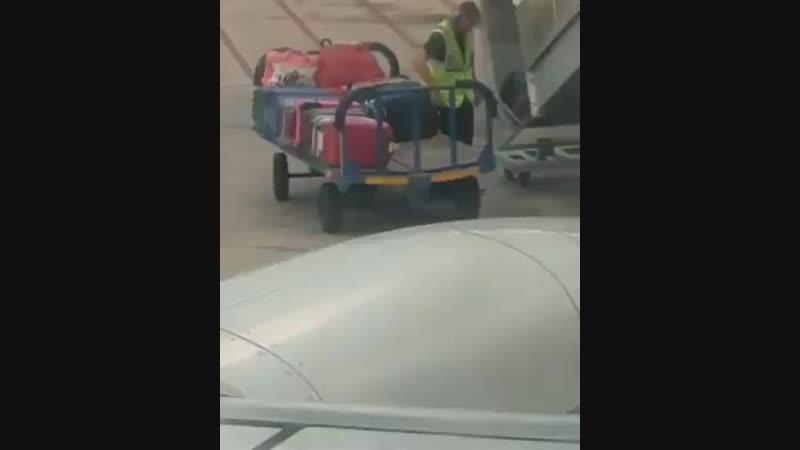 Багажный воришка!
