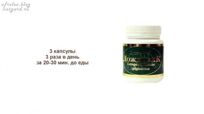 Гриб Дождевик. Гриб - пылесос