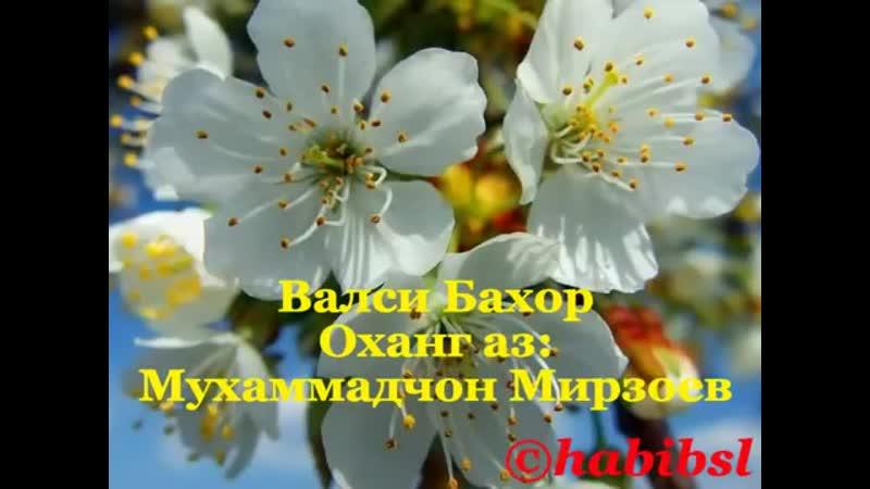 ВАЛСИ БАҲОР mp4