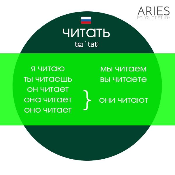 Дмитрий Шамонов | Санкт-Петербург