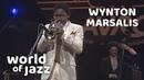 Wynton Marsalis Quintet on the North Sea Jazz Festival • 16-07-1982 • World of Jazz
