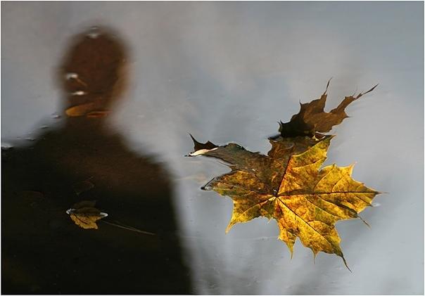 Осень «Осень, она не спросит, Осень она придет, Осень немым вопросом В синих глазах замрет» Г. Сукачев. «Осень» Он не любил жару. Никогда не любил. Не любил лето. И всегда мечтал об осени. О