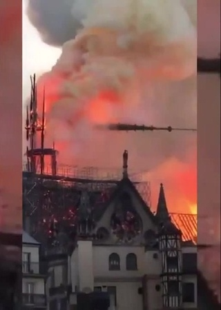 Mother's cry (Fire in the north dame)
