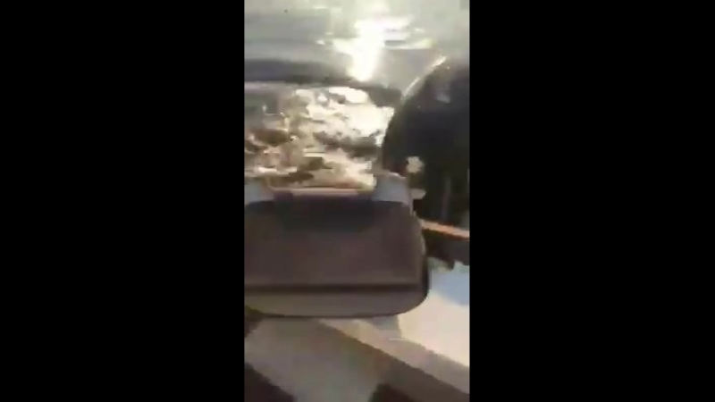 Австралийские рыбаки сачком отбились от запрыгивавшего в их лодку крокодила