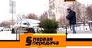 «Первая передача»: правила перевозки новогодней елки и подготовка к зимнему автопутешествию