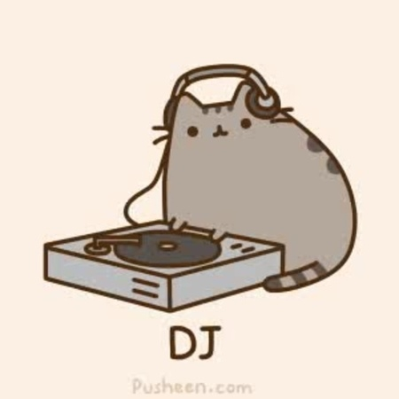 DJ Pusheen · coub, коуб