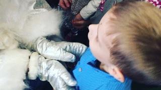 catherine_gasymova video