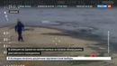 Новости на Россия 24 • Русский Робинзон: на шведском необитаемом острове нашли россиянина