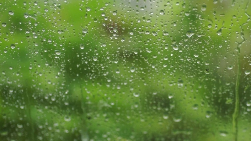 Gentle rain sounds for sleeping 3 hours - windows rain