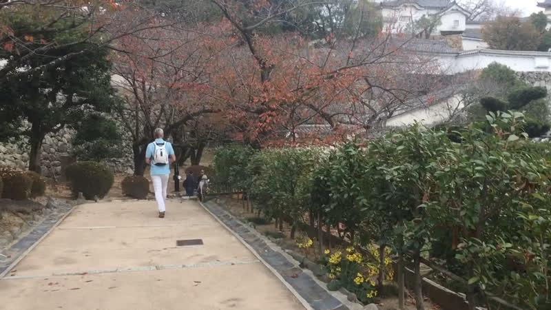 Замок Химэдзи - белой цапли !