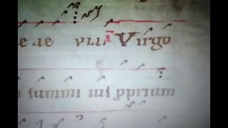 Virgo Salus mundi