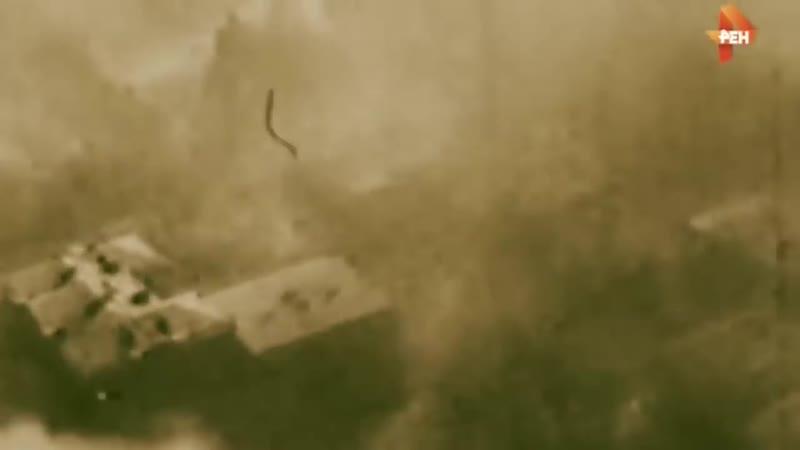 Это сообщение вызвало ШОК. Польские кладоискатели заявляют, что сумели обнаружить «золотой» поезд