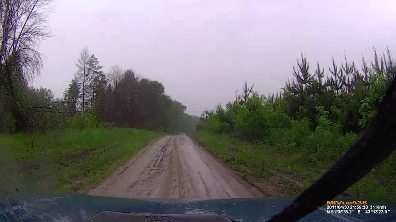 Едем по лесу во время дождя