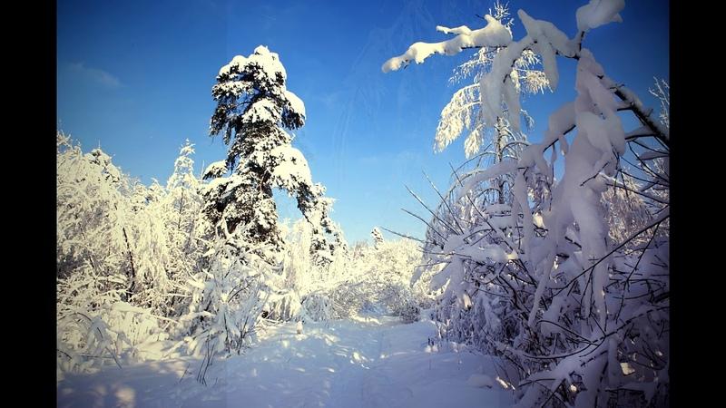 Сказка снежной зимы в Гуслице