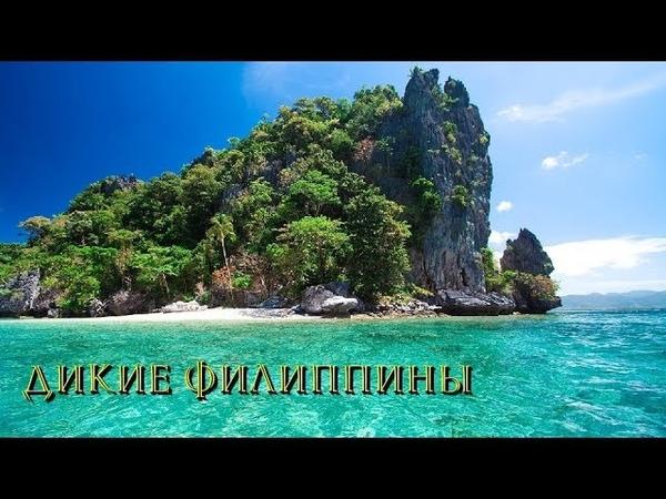 Nat Geo Wild Дикие Филиппины. Рай (1080р)
