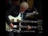Соло - гитарист исполняет гр. Иглс исполняет мелодию песни