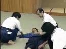 Kobujutsu Taisabaki