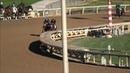 Hard Not To Love (outside horse) 2/8/19 Santa Anita