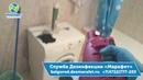Травля тараканов в Белгороде ДезСлужба Марафет