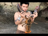 Primitive Technology with Survival Skills looking for food Lobster and Crab giant