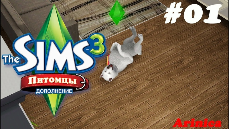 The Sims 3 Питомцы 01 Добро пожаловать!
