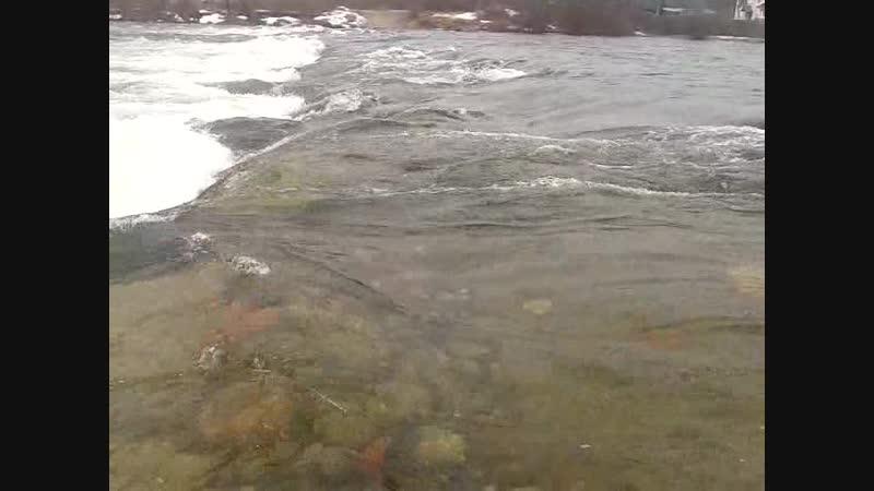 Video-2013-04-26-11-35-05.mp4