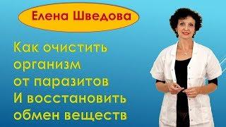 Елена Шведова Как очистить свой организм от паразитов и улучшить обмен веществ