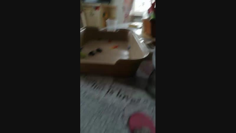ботл флип челендж