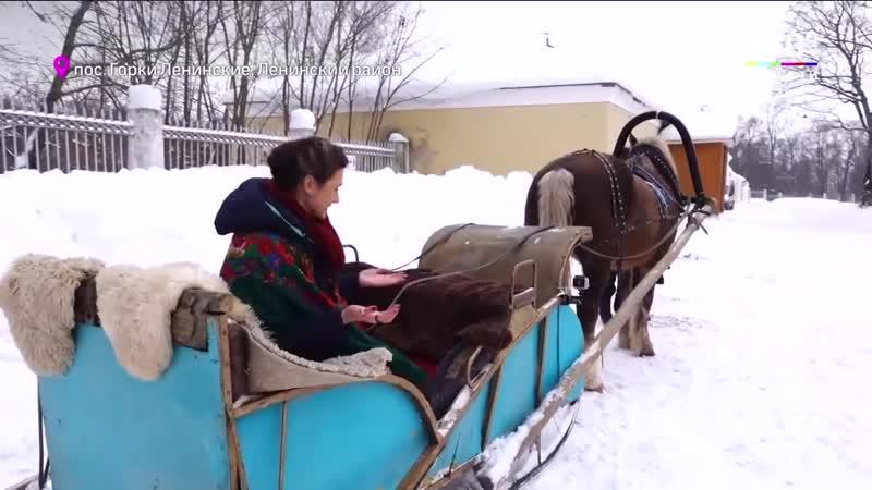 Зима в Подмосковье попасть в XVIII век в усадьбе Горки Ленинские