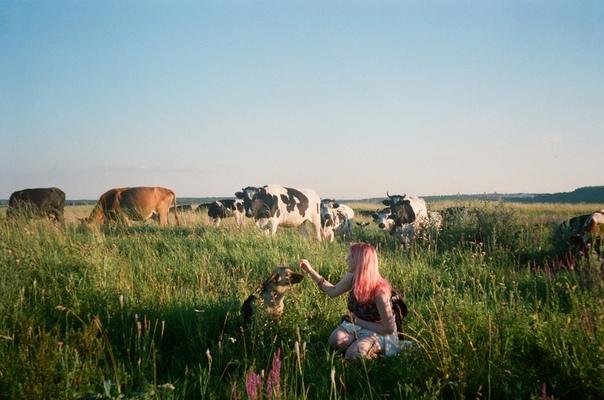 бесконечное лето, ненароком растерянное в суете времени. автор фото: Алена Шангина