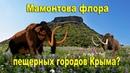 Мамонтова флора в пещерных городах Крыма 👍Экспедиция с каналом AISPIK