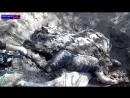 Новосветловка ЛНР.14 августа,2014.Расстрелянные ополченцы карателями из Айдара в поселке Новосветловка.