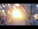 Самое красивое зимнее видео Зимняя сказка Снегопад Красивая зима Релакс