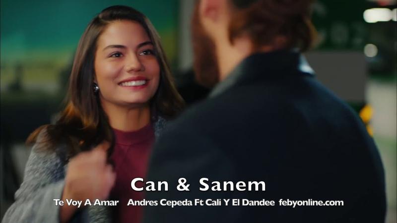Can Sanem - Te Voy A Amar