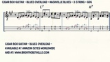 Cigar Box Guitar - Blues Overload - Nashville Blues - 3 String Guitar - GDG